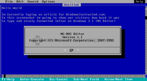 Windows 3.1 MS-Dos Editor